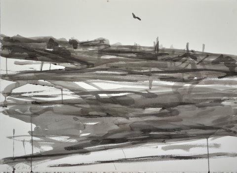 Landscape 2012, ink on paper, 65X67 cm