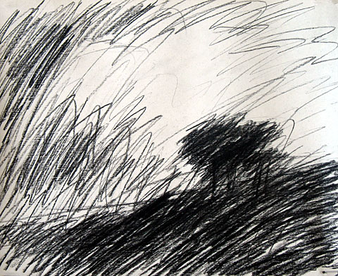 Tree after Rembrandt, 2006, charcoal on paper, 24×29 cm