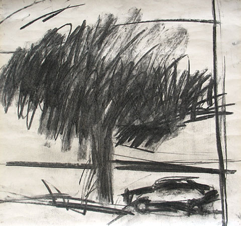 Tree and Car I, 2006, charcoal on paper, 44×47 cm